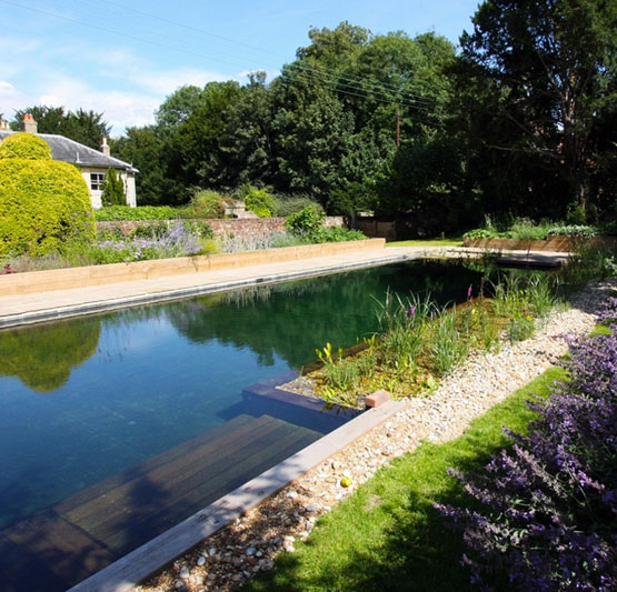 Oasis Swimming Pools Kent| Natural Swimming Pools