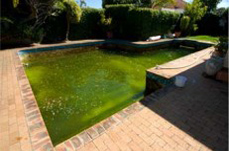 oasis-swimming-pool-refurbishment-before