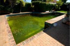 oasis-swimming-pool-refurbishment-before