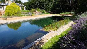 Oasis Swimming Pools Kent | Natural Swimming Pools